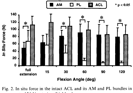 acl線維の違い
