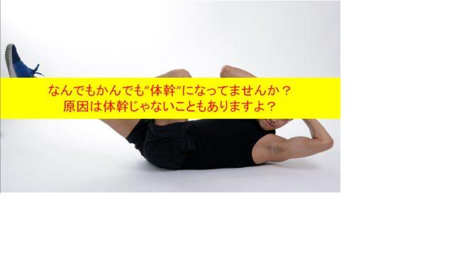 下肢痛=体幹?