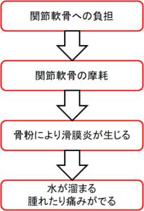 滑膜炎の機序