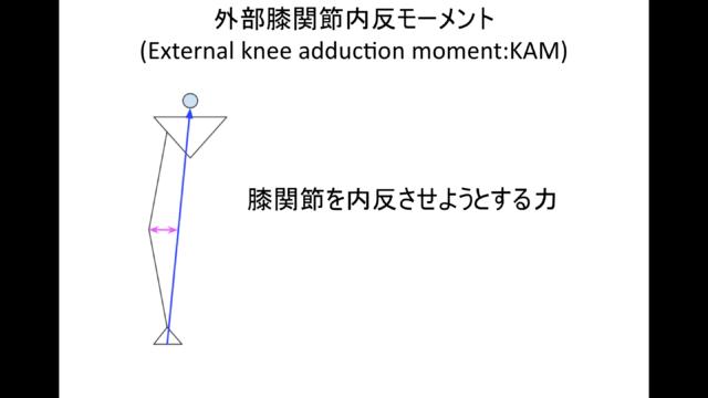 外的膝関節内反モーメント(KAM)
