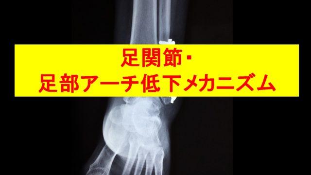 足関節アイキャッチ