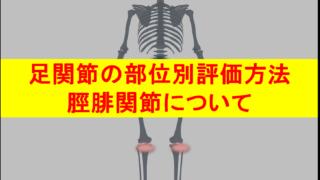 足関節部位別評価方法・脛腓関節について