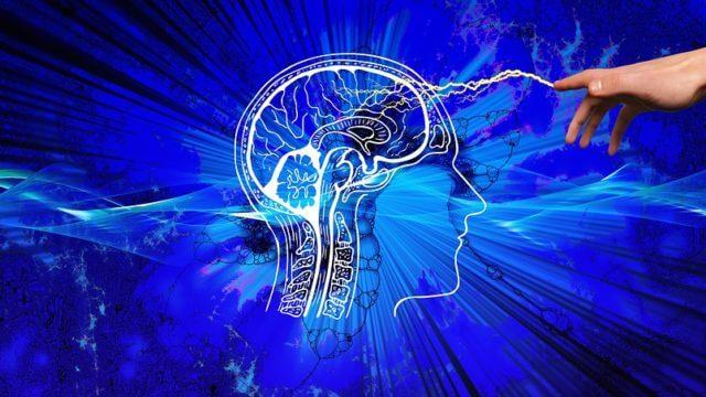 運動と認知機能の関係