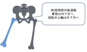 関節中心軸股関節