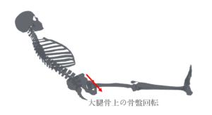 大腿骨上の骨盤回転